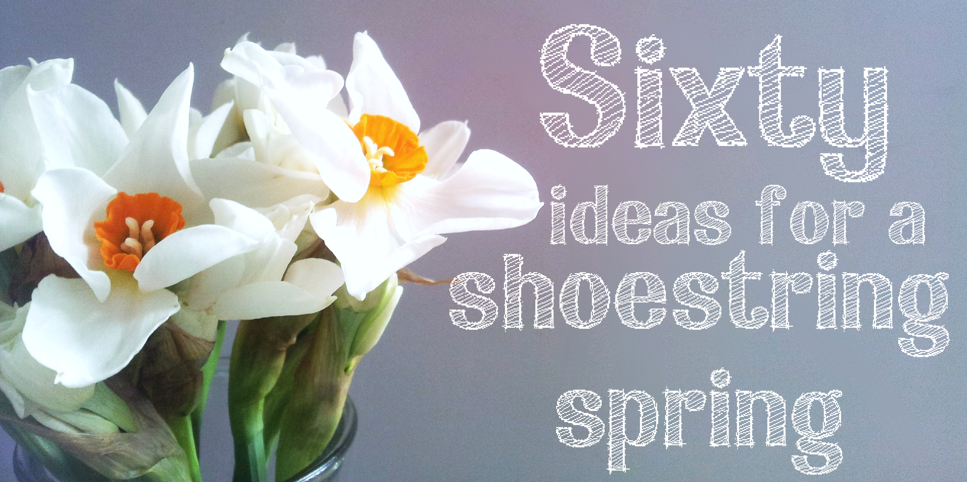 Ideas for a thrifty Spring