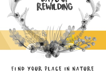30 days of rewilding book