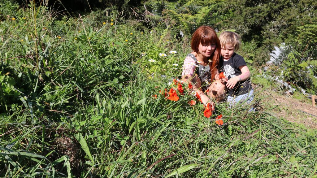 Help your children fall in love with nature