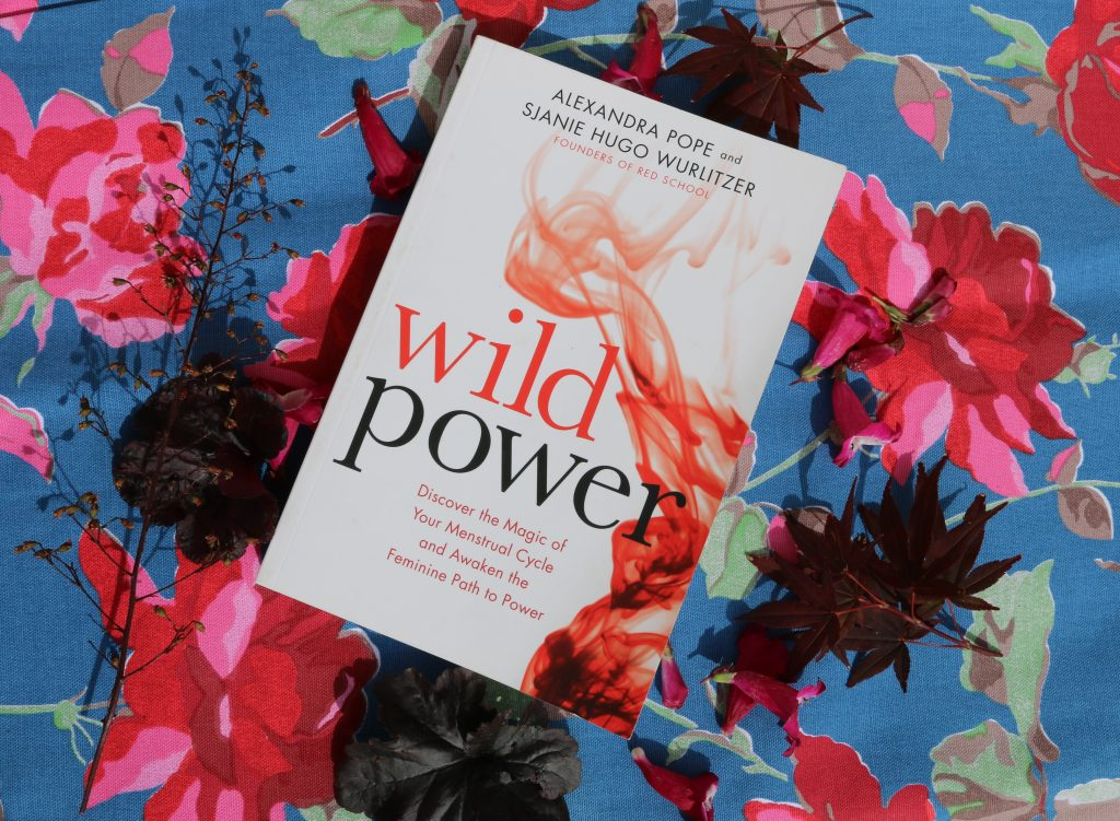 Wild Power Book Giveaway  Lulastic